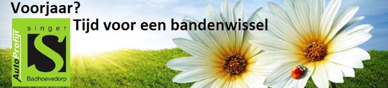 renesinger.nl